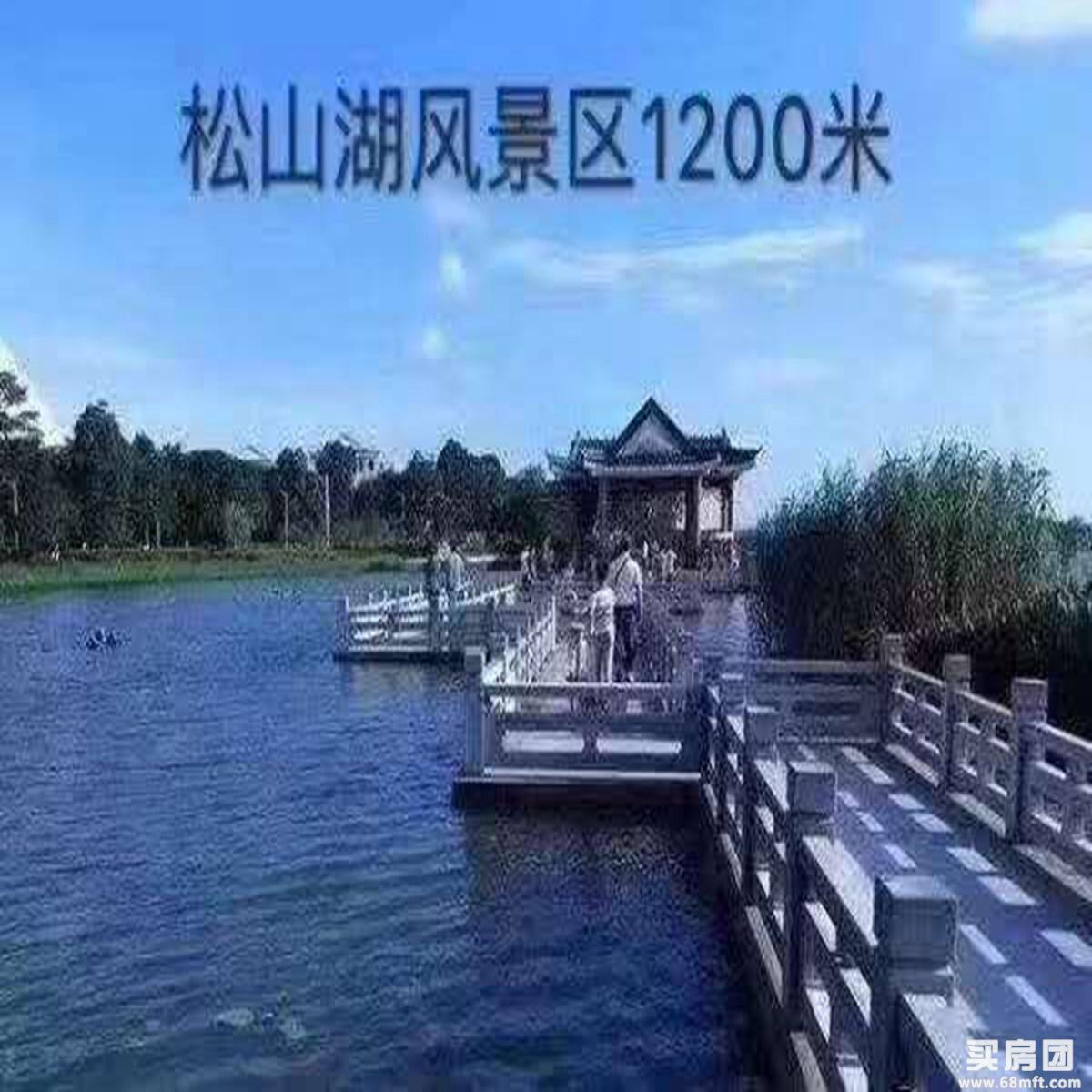 大岭山新盘 华为比邻 9.9万/套 双地铁口 9.9万/套 首付5成 分期3-5年